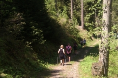Nordic Walking from Lac de Rosiere with Vivo-shapehealthlife