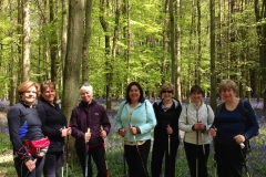 nordic-walking-vivo