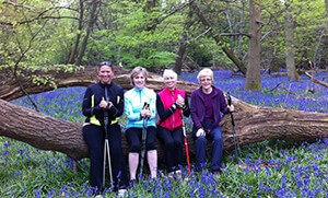 nordic-walking-bluebells